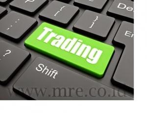 Dongeng-investasi-MRE